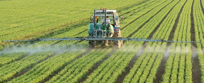 День работников сельского хозяйства